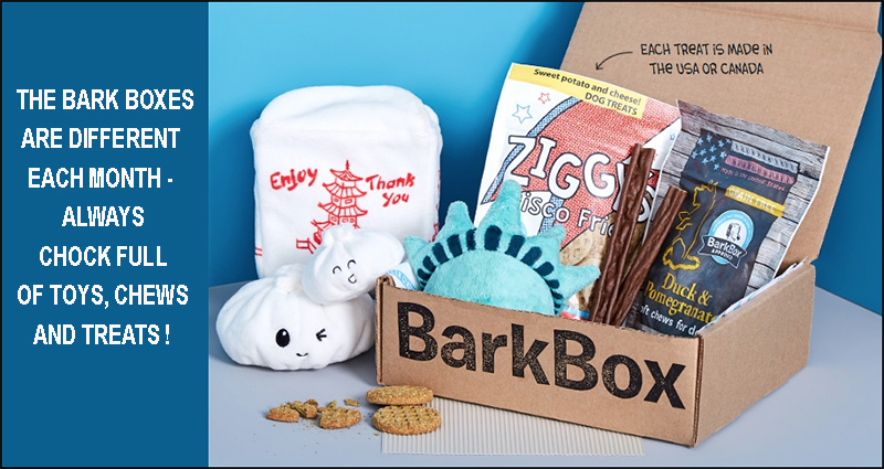 Barkbox donates to JRRCA